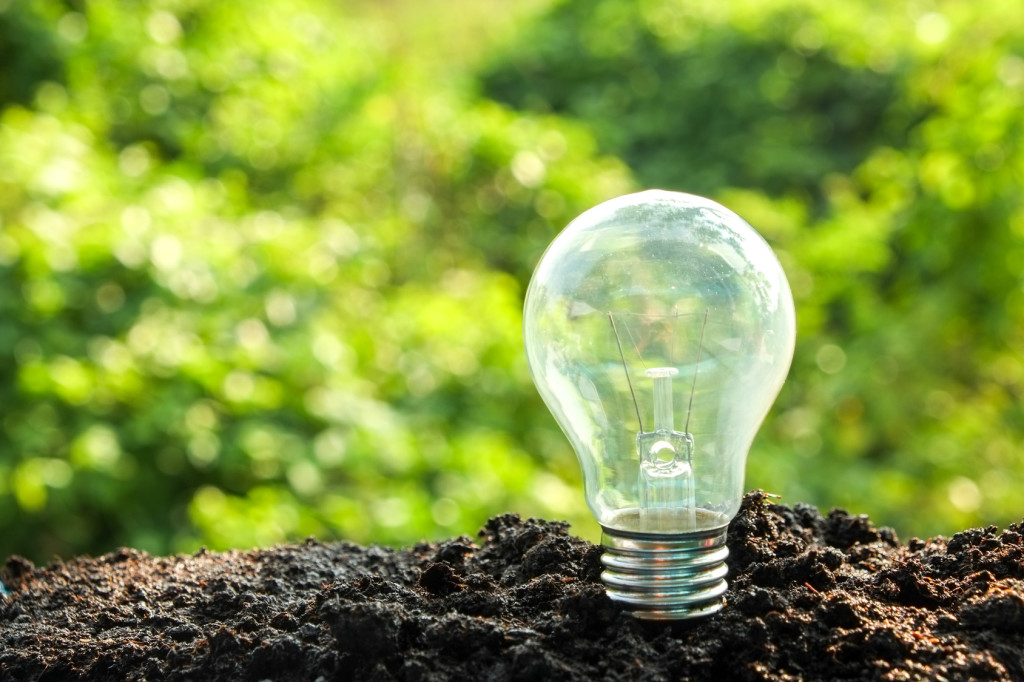Incandescent lightbulb screwed into dirt with greenery in the background