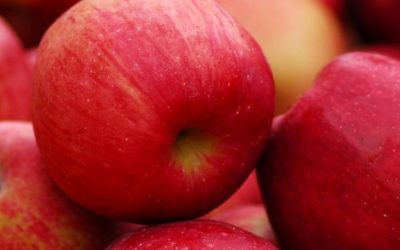 Comparing Apples to Apples: EnergyStar Makes You Shine