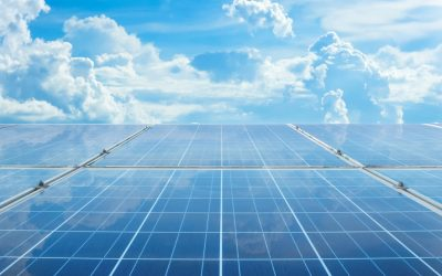 4 Reasons Why Businesses Should Consider Solar