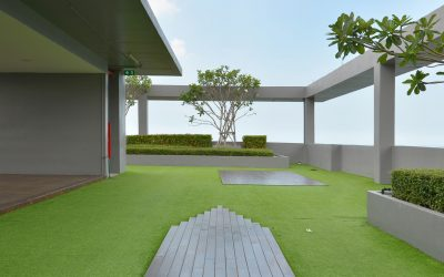 Blue Roof, Green Roof