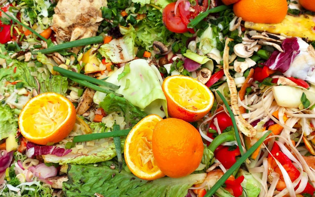 Reduce and regulate organic waste | colorful pile of food waste | Cost Control Associates